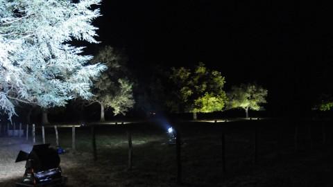 Éclairage-de-parc-03