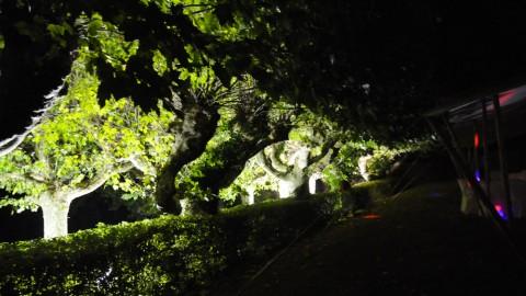 Éclairage-de-parc-08