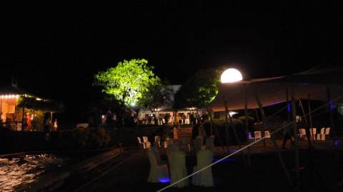 Éclairage-de-parc-09