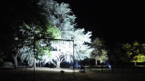 Éclairage-de-parc-13