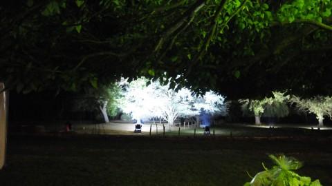 Éclairage-de-parc-21